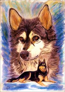 ~ Snow Dog Drawing ~ by Sandra  Vollmann