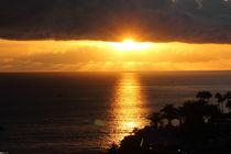 Golden sunset by bagojowitsch