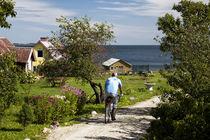 Am Finnischen Meerbusen von Christian Hallweger