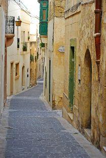 Victoria, Gozo... 5 by loewenherz-artwork