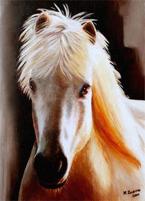 Islandpferd - Pferdeportrait handgemalt by Marita Zacharias