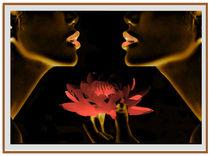 Digital Durch die Blume von bilddesign-by-gitta