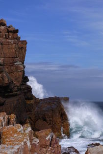 Cape of Good Hope von ysanne