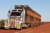 Road Train III von Christian Hallweger