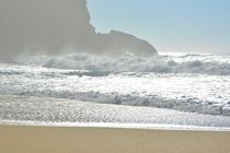 Beach in the Nazare von Diana Gavrylova