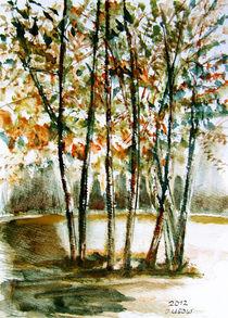 Herbstlandschaft von Irina Usova