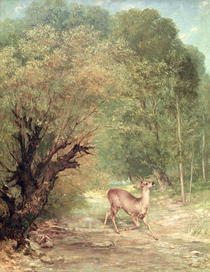 The Hunted Roe-Deer on the alert, Spring von Gustave Courbet