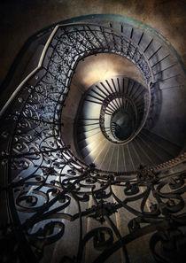 Ornamented spirals by Jarek Blaminsky