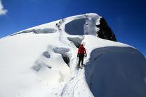 Schneebrücke (Der Abstieg) von Gerhard Albicker