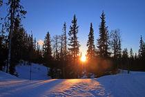 Ein Wintertag von Gerhard Albicker