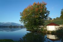Am Luganersee by Bruno Schmidiger