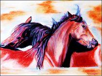 Pastell-wildpferde-2heller