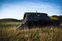 Abandoned von Janis Upitis