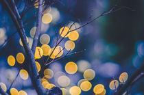 Petzval-Lichter by goettlicherfotografieren