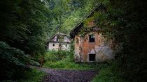 Altes Haus im Wald by Mathias Karner