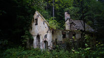 Alte Ruine im Wald by Mathias Karner