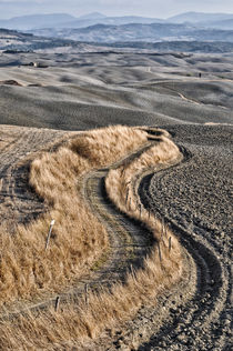 'Landschaft Toskana Italien / italian landscape Tuscany' by Thomas Schaefer  (www.ts-fotografik.de)
