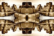 Heuballen Collage II by Christian Hallweger