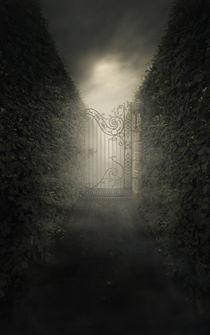 Forgotten alley by Jarek Blaminsky