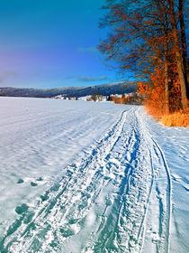 Auf Wanderung durch eine sonnige Winterlandschaft von Patrick Jobst