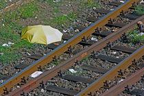 Der Schirm von bagojowitsch