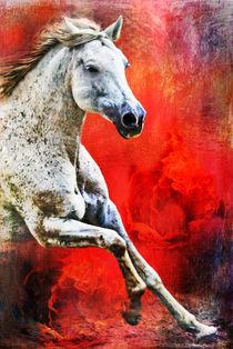 Still Burning von artfulhorses-sabinepeters