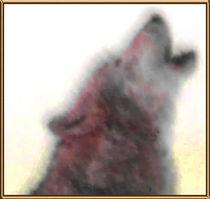 Howling Wolf von kittymisty