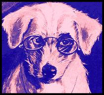 Dr. Dog von kittymisty