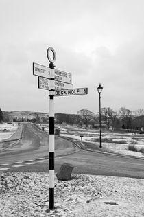 Pointing the Way, Goathland Signpost von Rod Johnson