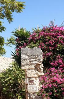 Urlaub auf der Insel Kreta in Griechenland von mellieha