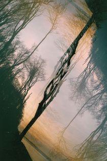 Der Baum der Zukunft ... von Katrin Schade