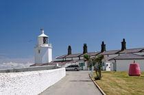 Lizard Lighthouse, Cornwall von Rod Johnson
