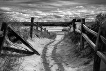 Beach Path by David Hare
