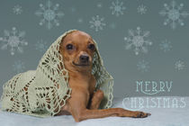 Christmas Time / 7 von Heidi Bollich