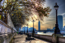 The River Thames Path by David Pyatt