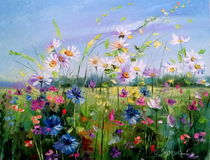 Wild flowers in the field by Olha Darchuk
