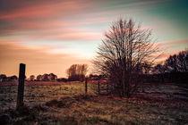 Kalter Morgen von Sandro Mischuda