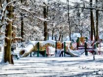 Winter Playground by Susan Savad