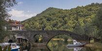 Bridge von Raymond Zoller