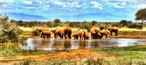 herd of elephants by Wolfgang Pfensig