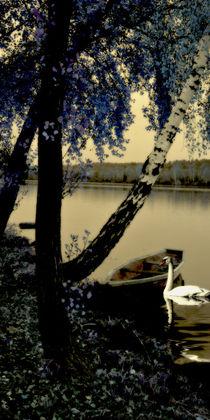 Schwanensee - Swan lake V von Chris Berger