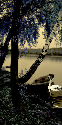 Schwanensee - Swan lake V by Chris Berger