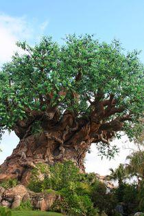 Baum des Lebens - Natursymbolik von mellieha