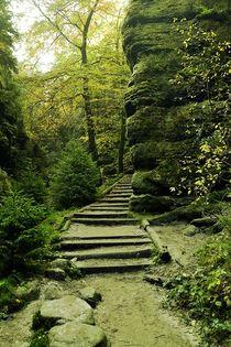 Waldweg by Ute Bauduin