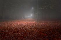Red Leaves Park Avenue at Night von Gerhard Petermeir