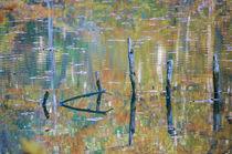 Autumn colored pond von Thomas Matzl