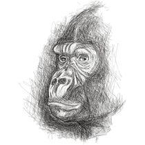 Gorila Rabiscado by Jose Aparecido da Silva