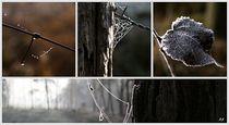 STILLE MOMENTE by Beate Radziejewski