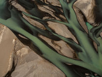 Braided River von Mark Hill