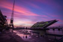 WIr bleiben wach bist die wolken wieder lila sind by Jan Butzkies